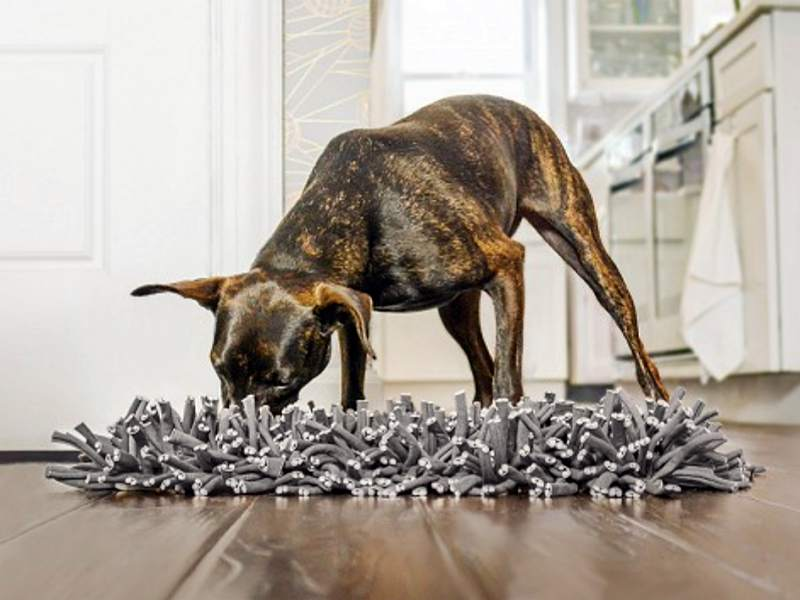 The Wooly Snuffle Mat feeds your dog's belly and brain
